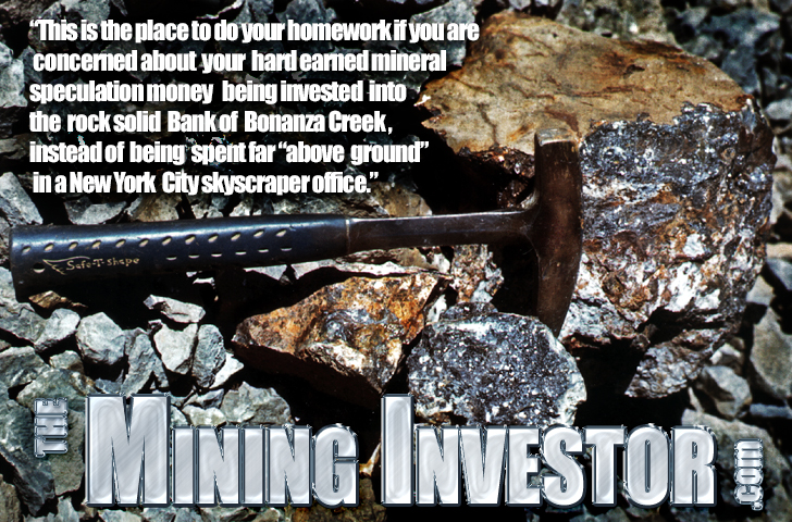 Take the risk out of investing in mining projects